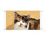 Calico Cat Banner