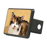 Calico Cat Rectangular Hitch Cover