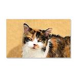 Calico Cat Car Magnet 20 x 12