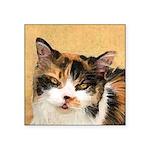 Calico Cat Square Sticker 3