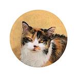 Calico Cat 3.5