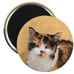 Calico Cat 2.25