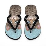 Gray Tabby Cat Flip Flops