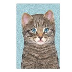 Gray Tabby Cat Postcards (Package of 8)