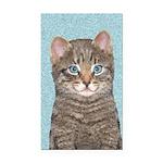 Gray Tabby Cat Rectangle Car Magnet