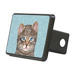 Gray Tabby Cat Rectangular Hitch Cover