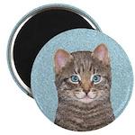 Gray Tabby Cat 2.25