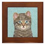 Gray Tabby Cat Framed Tile