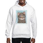 Gray Tabby Cat Hooded Sweatshirt