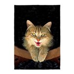 Mad Yellow Tabby Cat 5'x7'Area Rug