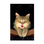Mad Yellow Tabby Cat Mini Poster Print