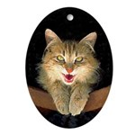 Mad Yellow Tabby Cat Oval Ornament