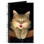 Mad Yellow Tabby Cat Journal