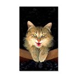Mad Yellow Tabby Cat 20x12 Wall Decal