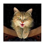 Mad Yellow Tabby Cat Tile Coaster