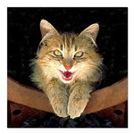 Mad Yellow Tabby Cat Square Car Magnet 3