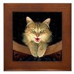 Mad Yellow Tabby Cat Framed Tile