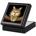 Mad Yellow Tabby Cat Keepsake Box
