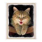 Mad Yellow Tabby Cat Throw Blanket