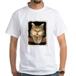 Mad Yellow Tabby Cat Men's Classic T-Shirts