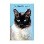 Siamese Cat Mini Poster Print