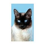 Siamese Cat Sticker (Rectangle 50 pk)