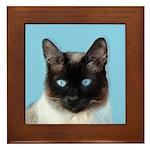 Siamese Cat Framed Tile