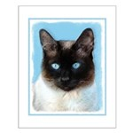 Siamese Cat Small Poster