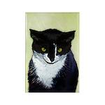 Tuxedo Cat Rectangle Magnet (10 pack)