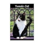 Tuxedo Cat in Window Mini Poster Print