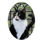 Tuxedo Cat in Window Oval Ornament