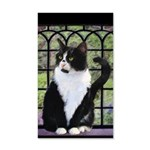 Tuxedo Cat in Window 35x21 Wall Decal