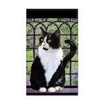 Tuxedo Cat in Window Rectangle Car Magnet
