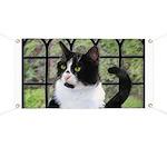 Tuxedo Cat in Window Banner