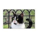 Tuxedo Cat in Window 20x12 Wall Decal