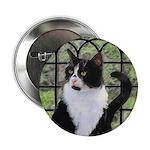 Tuxedo Cat in Window 2.25