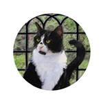 Tuxedo Cat in Window 3.5