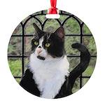 Tuxedo Cat in Window Round Ornament