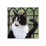 Tuxedo Cat in Window Square Sticker 3