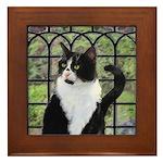 Tuxedo Cat in Window Framed Tile