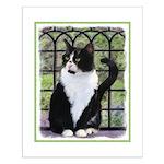 Tuxedo Cat in Window Small Poster