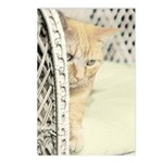 Yellow Tabby Cat Postcards (Package of 8)