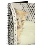 Yellow Tabby Cat Journal