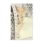 Yellow Tabby Cat 35x21 Wall Decal