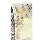 Yellow Tabby Cat Sticker (Rectangle 50 pk)