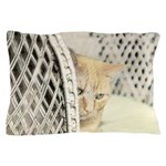 Yellow Tabby Cat Pillow Case