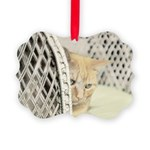 Yellow Tabby Cat Picture Ornament