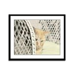 Yellow Tabby Cat Framed Panel Print