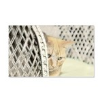 Yellow Tabby Cat 20x12 Wall Decal