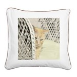 Yellow Tabby Cat Square Canvas Pillow